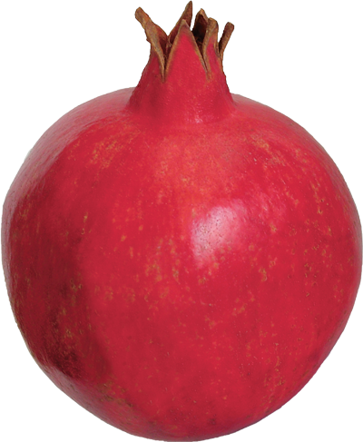 png pomegranate